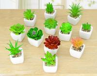 Decoration Crafts Figurines Miniatures Artificial Simulation PVC Green Mini Fleshy Small Potted Plants Decoration Free Shipping
