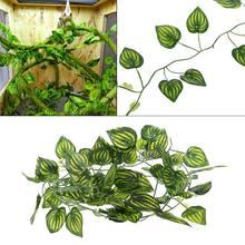 Decoração de terrário de videira artificial, lagaros, plantas de descanso de camaleões