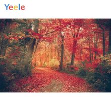 Yeele Autumn Scenery Fallen Maple Leaves Forest Photography Backdrops Personalized Photographic Backgrounds For Photo Studio цена