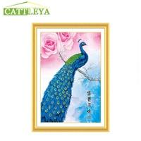 CATTLEYA Special Shaped Diamond Embroidery Animal Peacock Full Rhinestone 5D DIY Diamond Painting Cross Stitch Mosaic