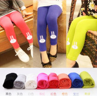2013 candy color rabbit head girls legging child trousers kids legging 5pcs/lot