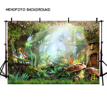 Arrière plan pour photographie de conte de fées, arrière plan pour photographie de forêt, pour Studio Photo, champignons, elfes, fleurs, pour séance Photo