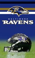 3FTX5FT Baltimore Ravens flag  100D polyester digital printed banner with 2 Metal Grommets  free shipping
