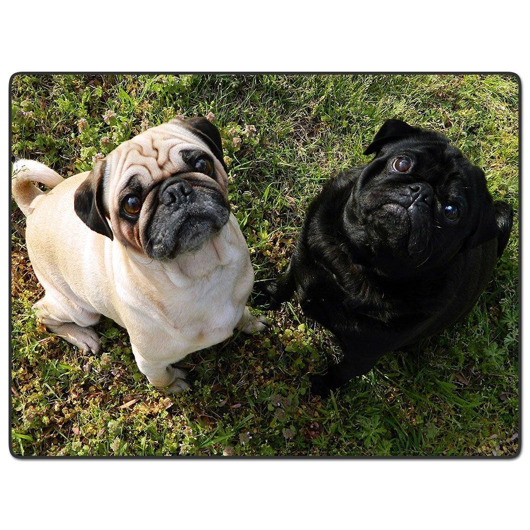 Custom 50x80 Blankets Funny Pug Dog 2 Comfy Funny Bed Blanket