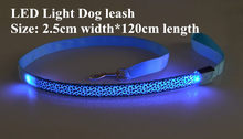 B05 Leopard Pet dog LED leahses leads pet traction rope pull strap for dogs cats 120cm length battery and USB Rechargeable(China)