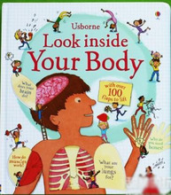 Look inside Your Body Flap Book