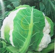 St. snowy cauliflower seeds vegetable 100seed