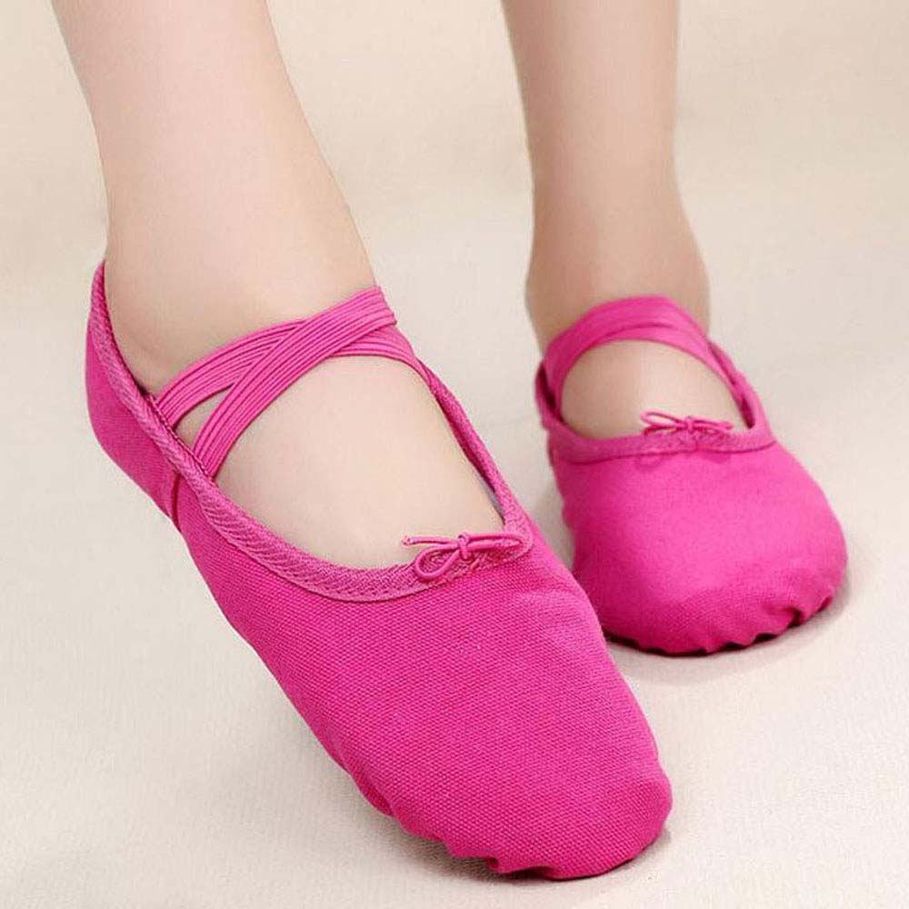 Womens Ballroom Salsa Latin Practice Leather Dance Shoes ... |Practice Ballet Shoes