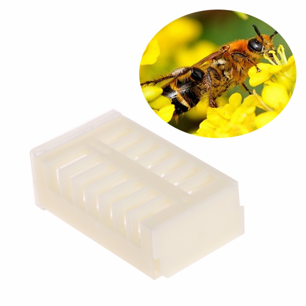 10Pcs Bee Cages Plastic Multi Function Beekeeping Rearing Tools Queen King Bee Beekeeper Tool Supplies Good Quality C42