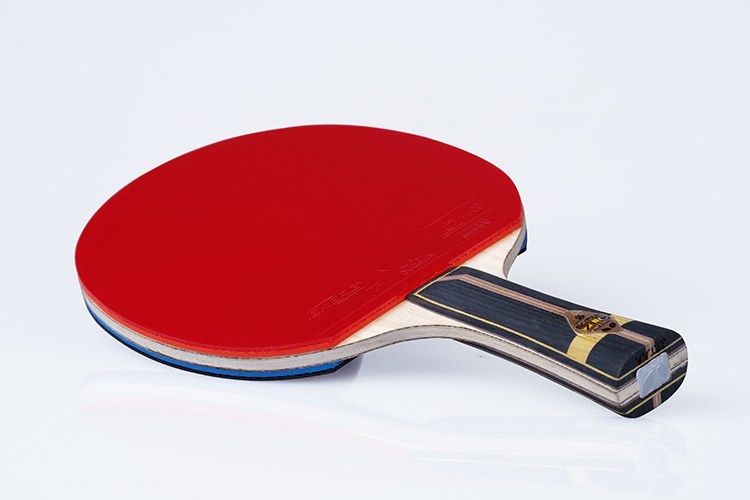 Professional Table Tennis Rubbers Racket Pingpong Paddle