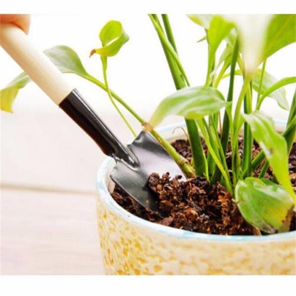 Vente chaude de Haute Qualité 3 Pcs Mini Jardin D\'outils À Main Kit ...
