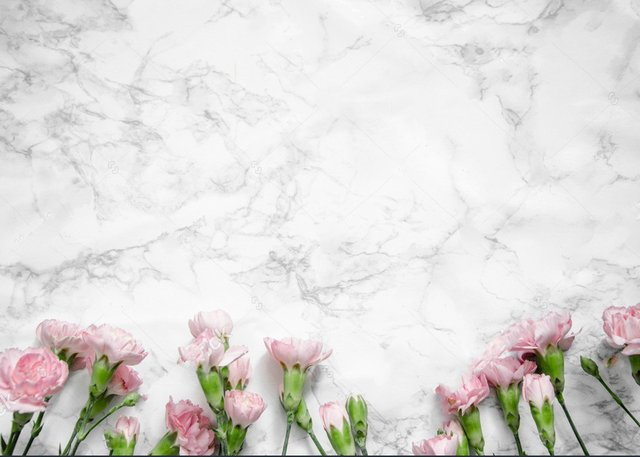 Pink Carnations Flowers White Marble Grey Wedding Party