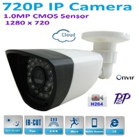 New Type1280 720P H 264 1 0 Megapixel HD ONVIF 2 0 IP Camera P2P Warterproof