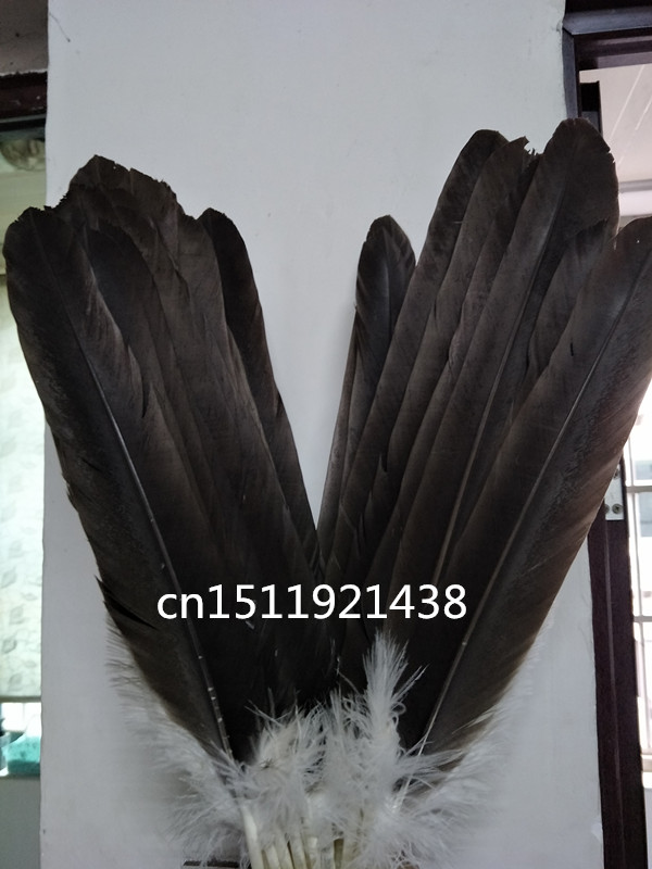 wholesale 100 rare natural big eagle feathers 45 50 cm 18 20 inche decoration Jewelry accessories