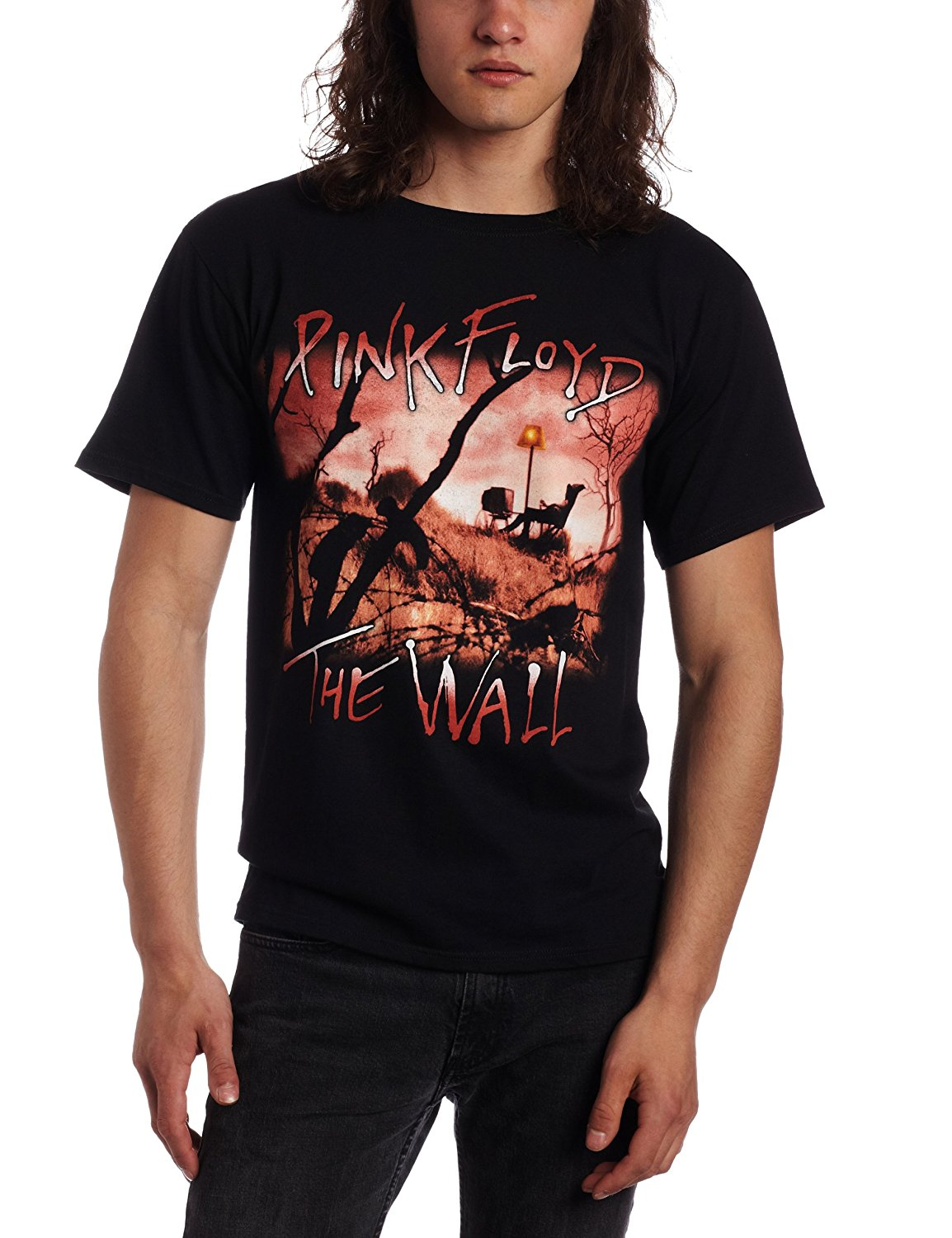 FEA Merchandising Mens Pink Floyd The Wall Meadow T-Shirt