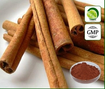 100gram Nature Cinnamon Bark Extract Powder 10:1 Free shipping