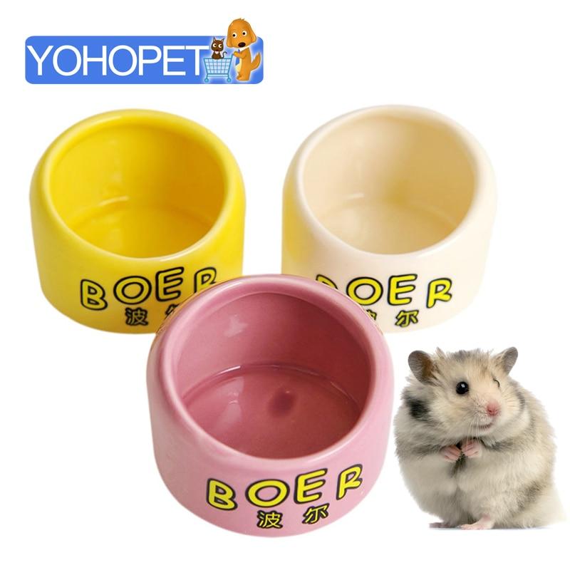 Guinea Pig Hamster Bottle Ceramic Bird Bath Totoro Bird Feeder Parrot Feeders Window Bird Feeder Bird Waterer