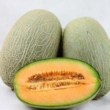 10 ml líquido Esencia del alimento líquido sabor melón Hami melón Hami sabor esencia líquida de la categoría alimenticia