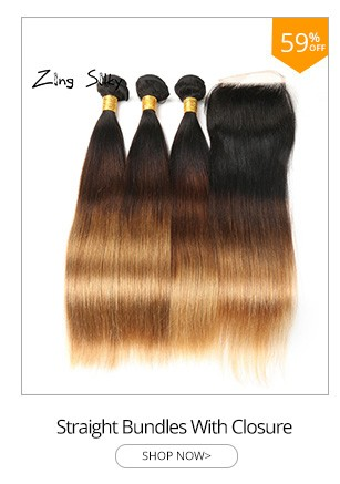 Ombre Straight Hair Weave Brazilian Human Hair 3 Bundles With Closure 1B4 27 Remy Bundles Hair Extension Zing Silky Hair Vendors