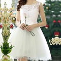 Fashion Women's Sexy Lace Hollow Sundress Party Prom Evening Mini Dress elegant new style dress
