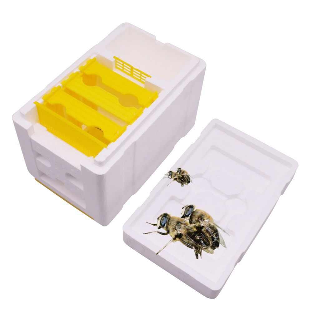 1 pcs Ape di Accoppiamento di Allevamento Box 241*148*166 millimetri Apicoltore Apiario Bee Orticaria Apicoltura Strumenti di Attrezzature di Buona isolamento