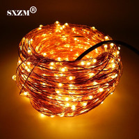 10M 20M 30M 50M Waterproof Copper Led String DC12V With DC Connector Fairy Light Holiday Decoration