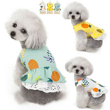 2019 New Pet Dog Clothes Pineapple Print Dresses Cute Princess Pajamas Cat Spring Summer Small