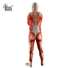 Attack On Titan Cosplay Costumes Titans Muscular Bodysuit Lycra