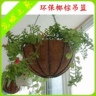 Coconut coir hanging basket hanging pots Scindapsus green basket of various specifications of iron pots round in 2 bags of mail