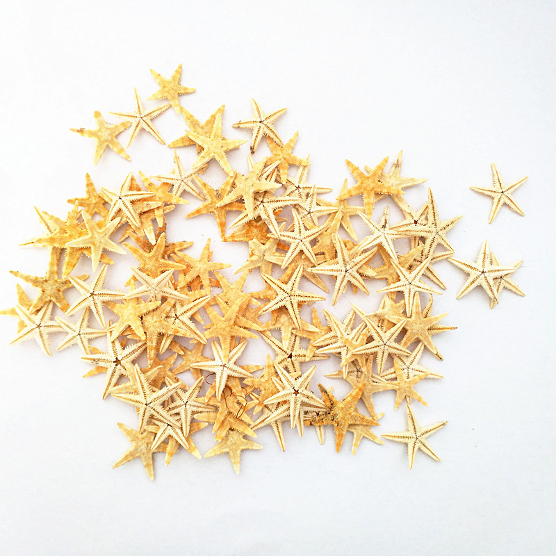 Happy Kiss100Pcs Trinket Mini Starfishes Craft Decoration Sea Beach DIY Beautiful Wedding Natural Stars Portable Photography