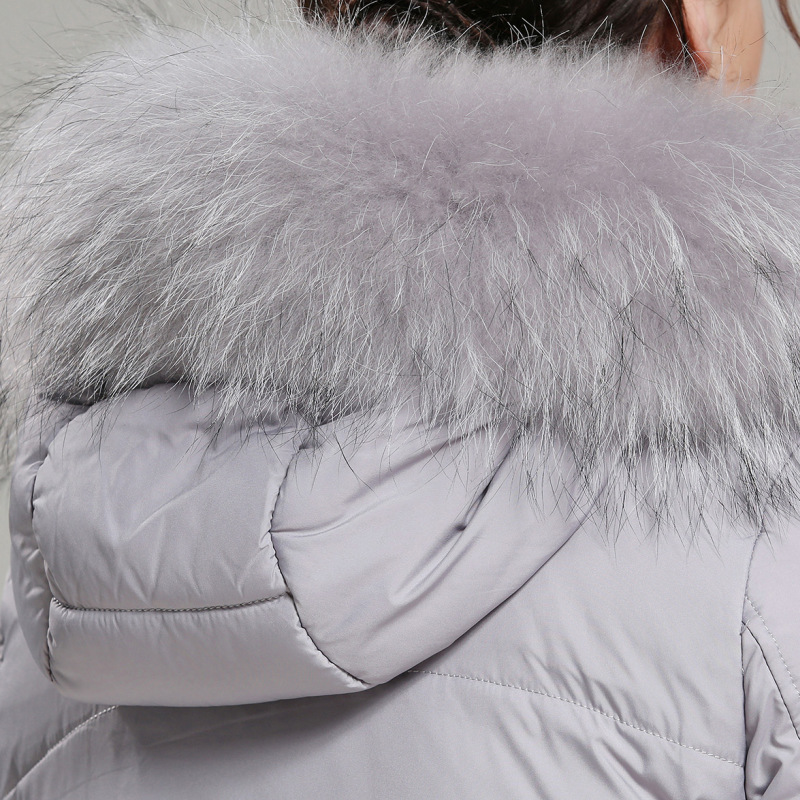 Noir Raton Vers Mince De En Taille La Europe Fourrure Modèles Section Anti Coton Laveur Épaissie gris Le Grande Bas Saison Collier Veste Dans Longue Féminins OwqwganAvR