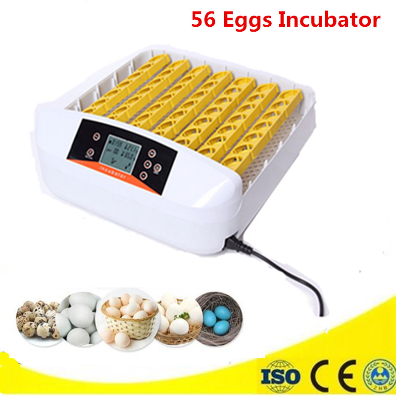New arrival mini incubator egg hatching machine on sale with full-automatic temperature control system best new product on sale 30