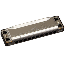 Tombo Harmonica 10 Holes Diatonic Harmonica Brass Reeds Blues Harp Mouth Organ Key C Musical Instruments
