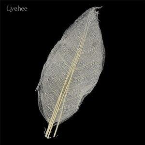 Image 4 - 열매 생활 50pcs 목련 해골 잎 말린 잎 Diy 바느질 결혼식 생일 파티 용품 홈 인테리어