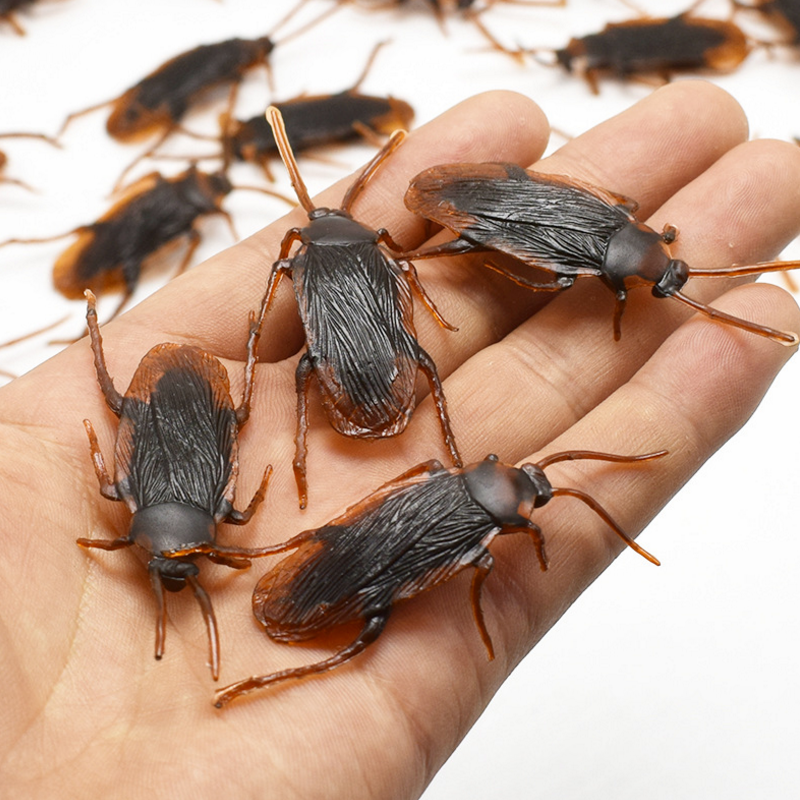 10 Pcs/Set Hot Sale Funny Baby Kids Child Halloween Plastic Cockroaches Joke Decoration Props Rubber Toys Gift For Kids