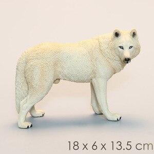 Image 4 - DDWE lupo selvatico modello giocattolo animali antichi selvatici simulazione bambino solido Zoo modello fauna selvatica mondo giocattoli per bambini giocattoli educativi