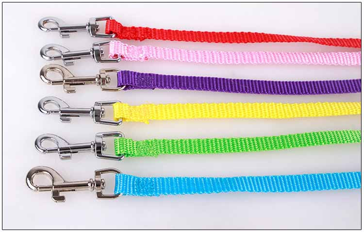 Cute Angel Pet Dog Leashes and Collars Set Puppy Leads for Small Dogs Cats Designer Wing Adjustable Dog Harness Pet Accessories Wholesale11