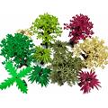 Создатель города зеленый Буш цветок трава растения листья лист лотоса создатель аксессуар блоки MOC игрушки для друзей создатели города