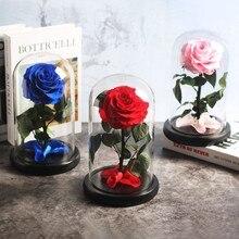 Красный вечный жизнь бессмертный цветок розовый Красавица и Чудовище розовое стекло купол День матери День Святого Валентина рождественский подарок