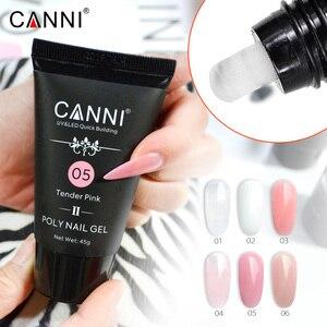 CANNI не липкий акриловый поли гель 45 г + Двойная ручка для нейл-арта + жидкое противоскользящее покрытие для ногтей + Прозрачные наконечники, весь комплект из натурального полигеля