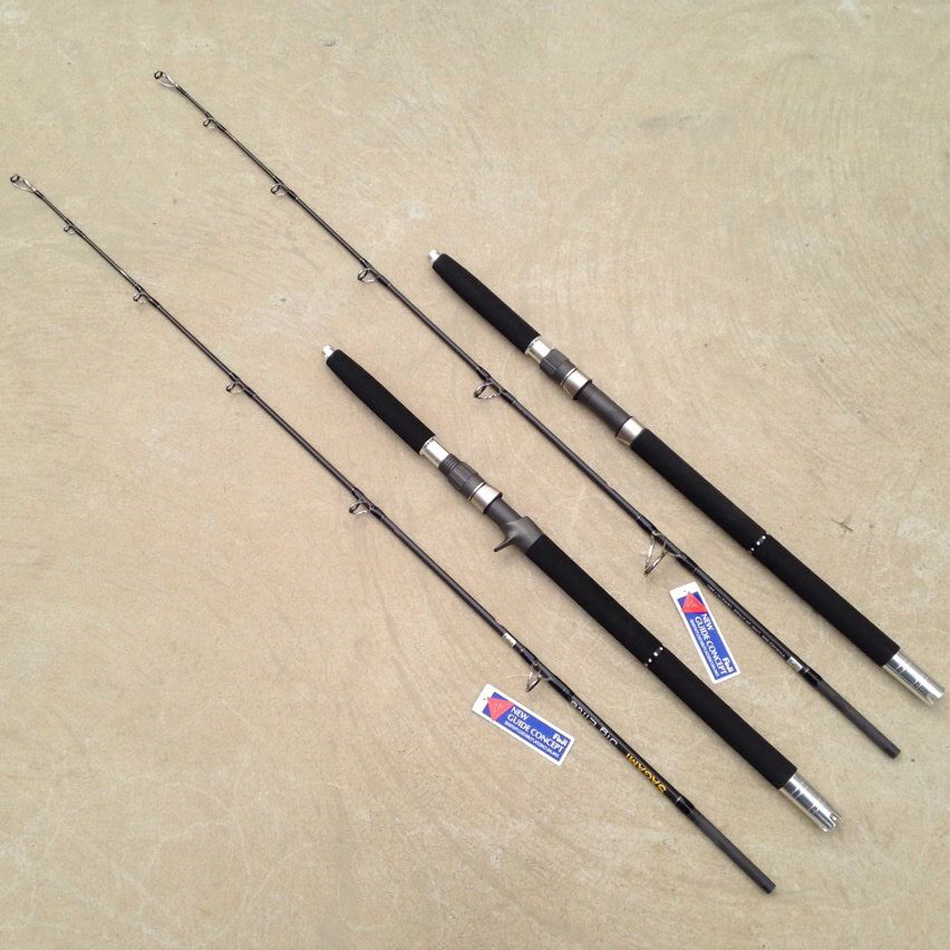 Full fuji parts jigging rod rod 150 400g big game for Big game fishing rods