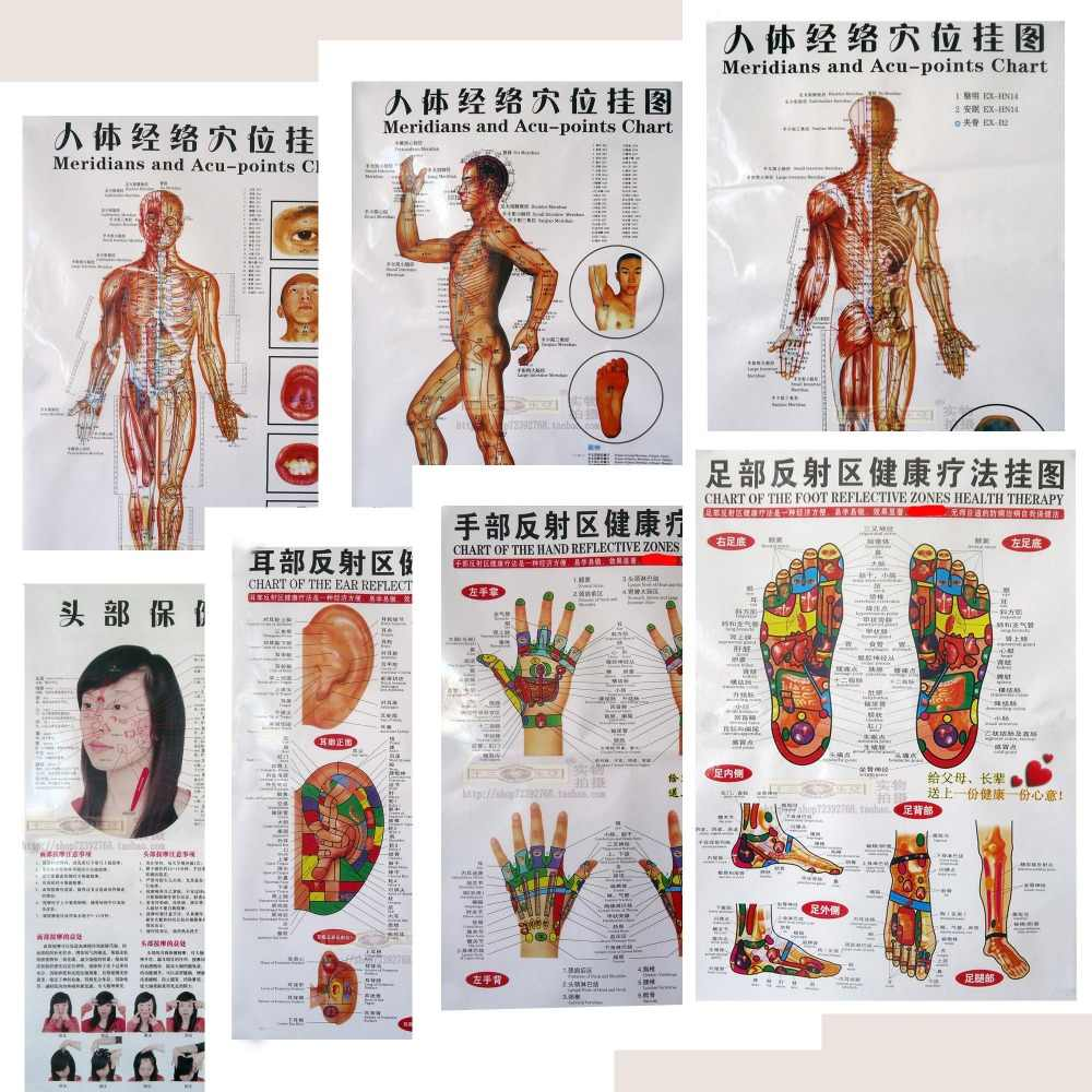 3 / 7pcs Body acupuncture points chart/human meridian gut map/human skeletal figure/body digest map/head eyes ears foot massage
