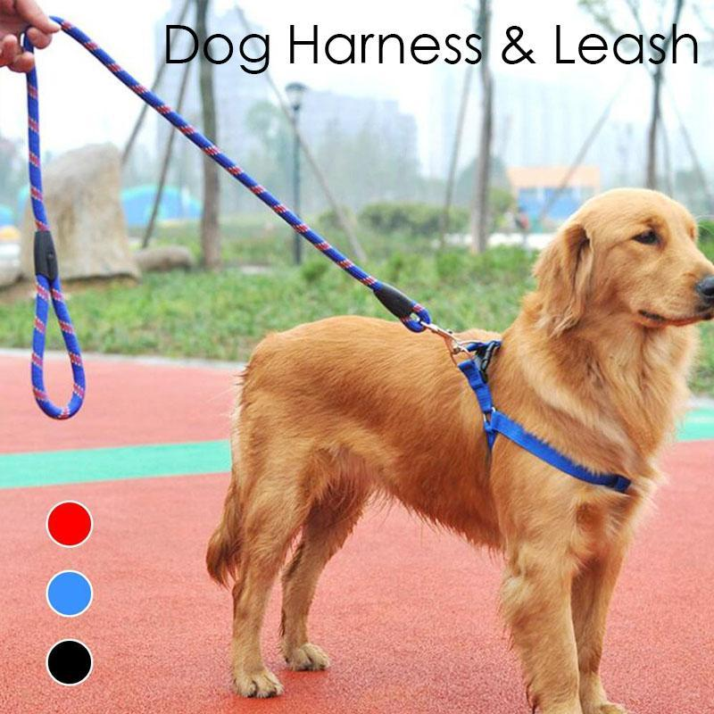 Compre Nylon Pet Dog Arnes Leash Set Cuerda Arnes Leash Dogs