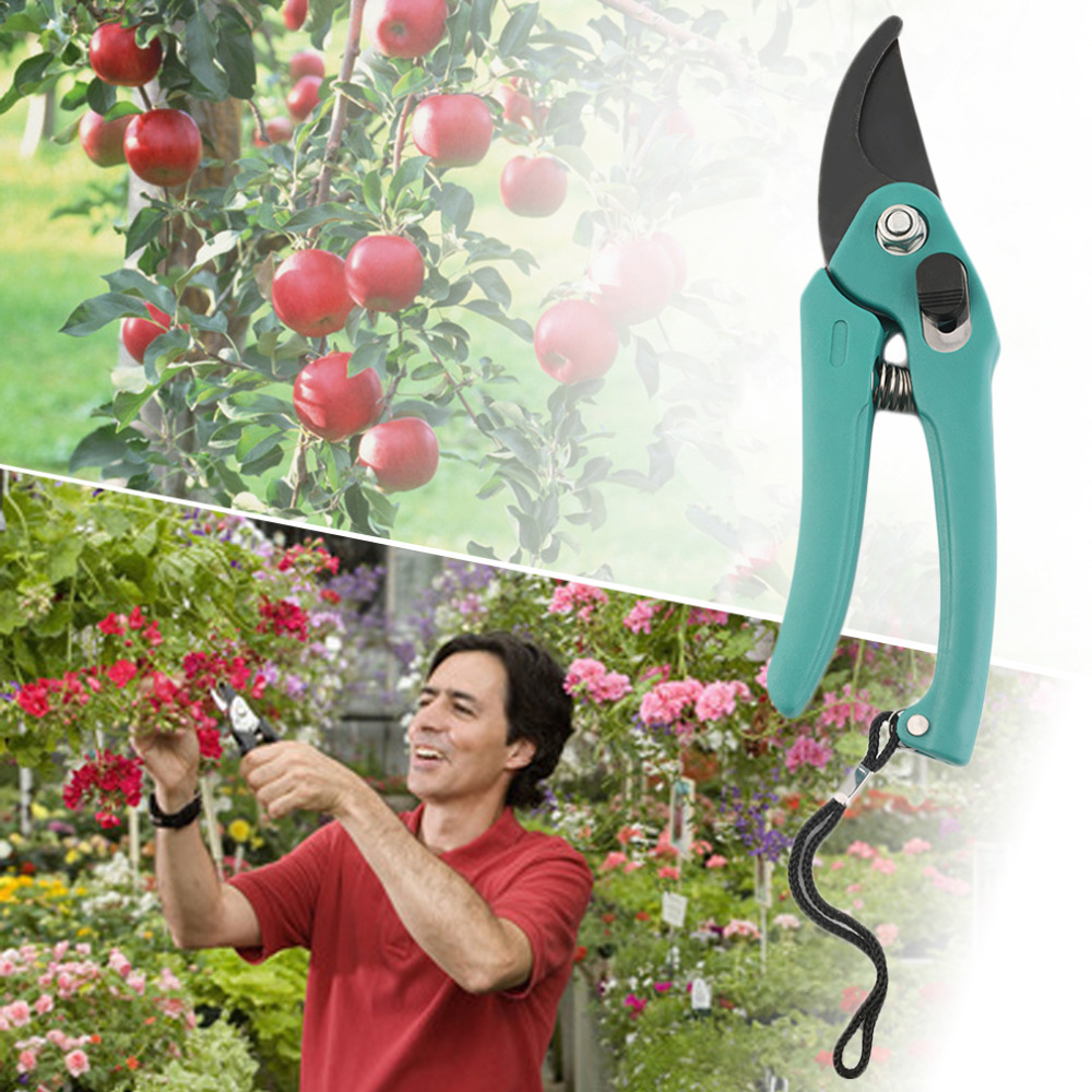 Gardening Fruit Tree Pruning Shear Scissor Snip Tool Hand Pruner Scissor Branch Cutter Secateur Bonsai Shrub Orchard Tool Plant