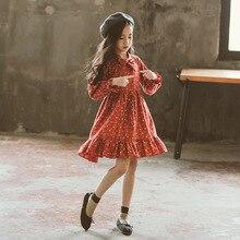2018 для девочек осенние платья новой корейской версии, в западном стиле для девочек юбки принцессы юбки.