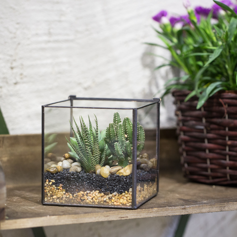 Modern Handmade Square Glass Geometric Terrarium Tabletop Succulents Fern  Moss Plants Box Tabletop Planter Flower Pot With Cover In Flower Pots U0026  Planters ...