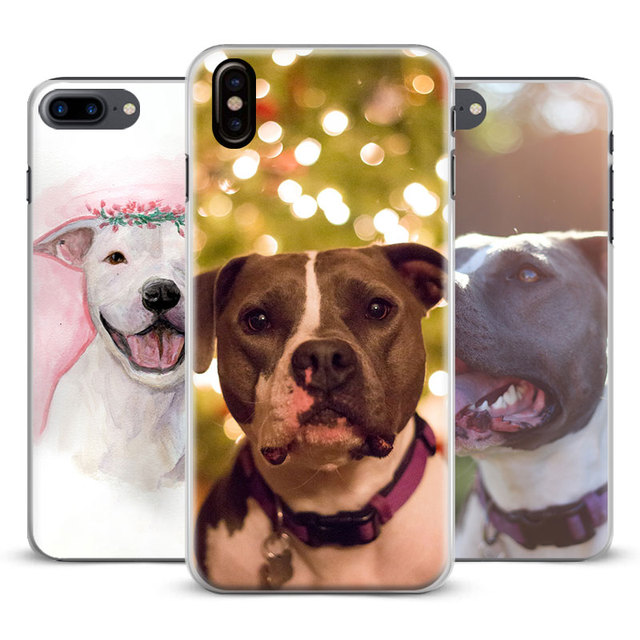 coque iphone x bull terrier