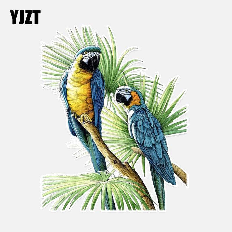 YJZT 11.4*14.4CM Beautiful Two Parrot Decor PVC Personalized Car Sticker High Quality 11A0100