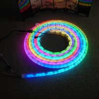 LED piksel ışık DC12V Yüksek kalite 5 m/Rulo 60led/m WS2811 flex neon dijital RGB rüya renk