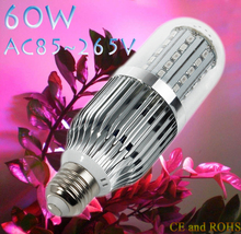 60W Led Grow Corn Light AC85-265V E27 40Red&20Bule 60 LEDS Grow Light For Flowering Plant and Hydroponics System
